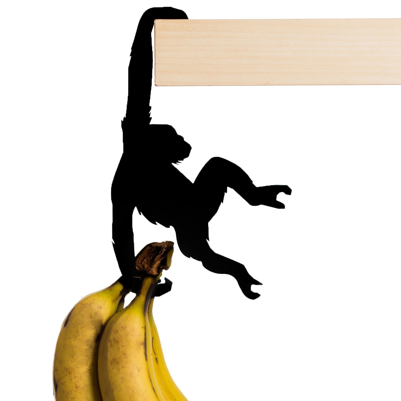Hold-it-Albert-The-Chimp
